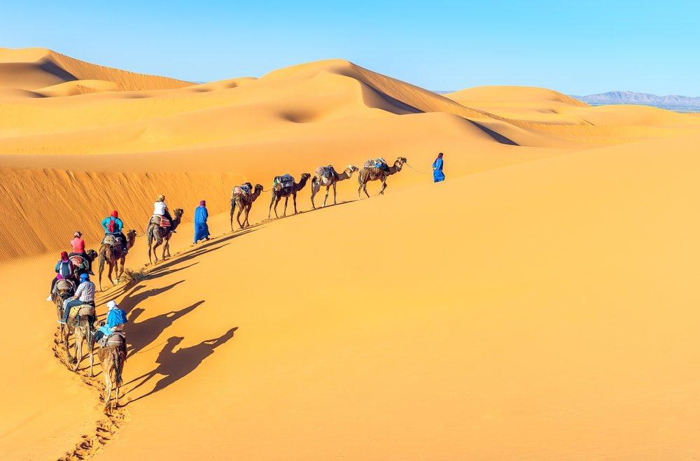 Výlet na velbloudech do pouště je velký zážitek