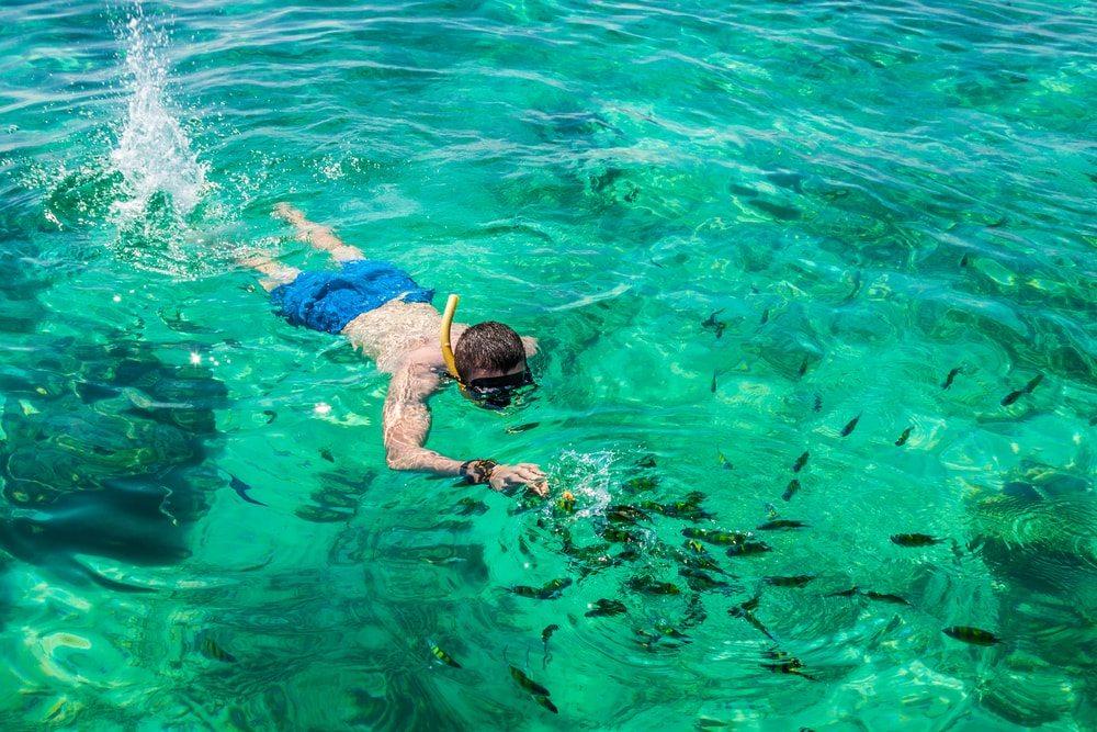 Šnorchlování s rybkami na Phuketu