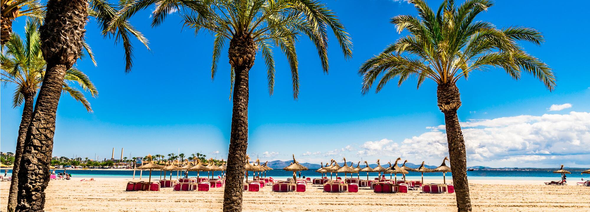 Palmy na pláži.