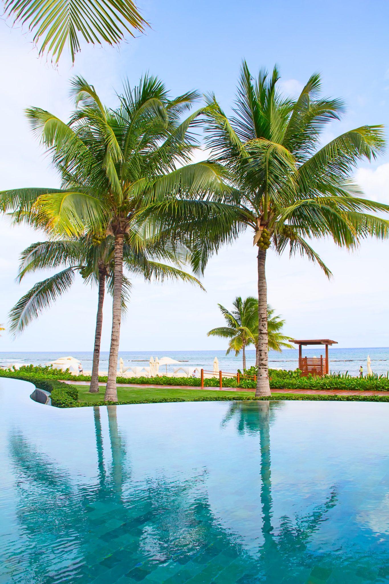 Palmy v Cancúnu