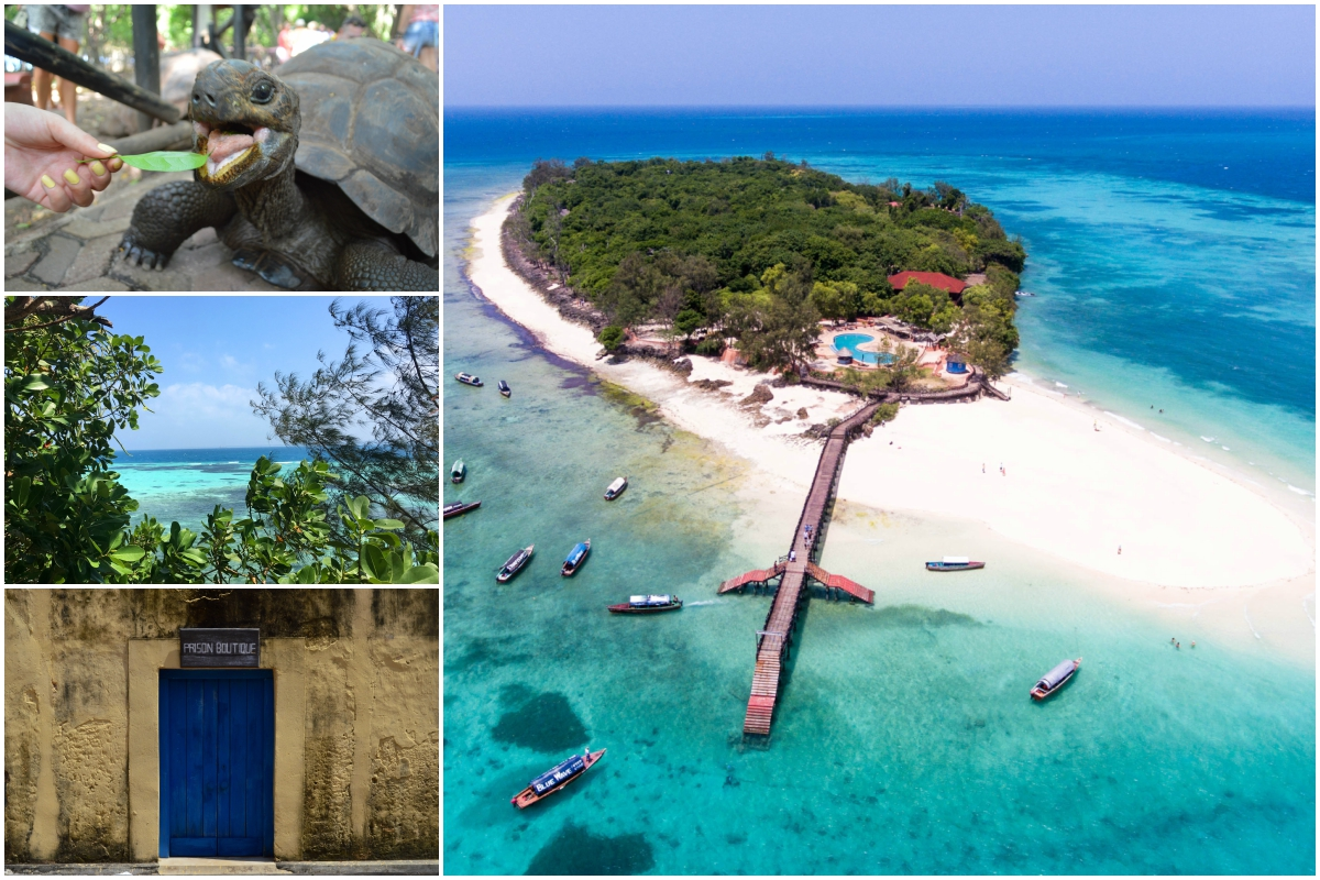Prison Island na Zanzibaru