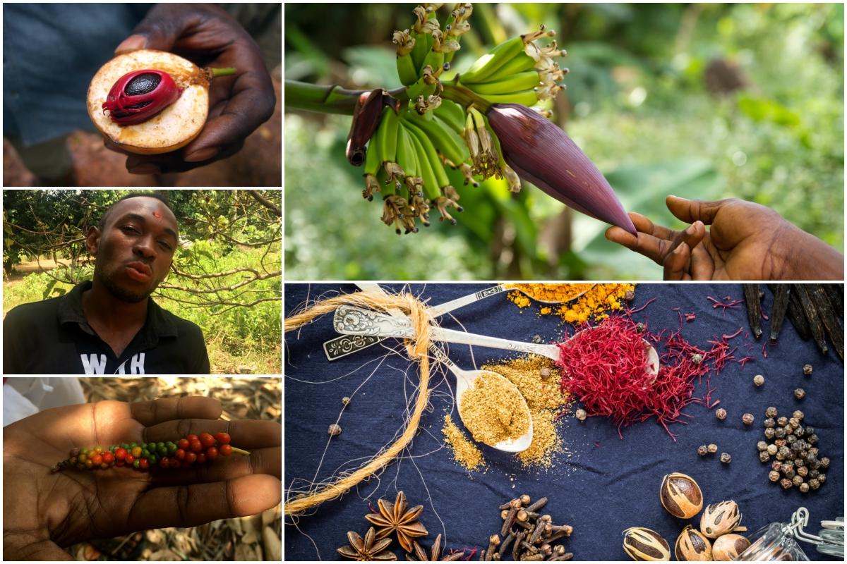 Spice Tour na Zanzibaru