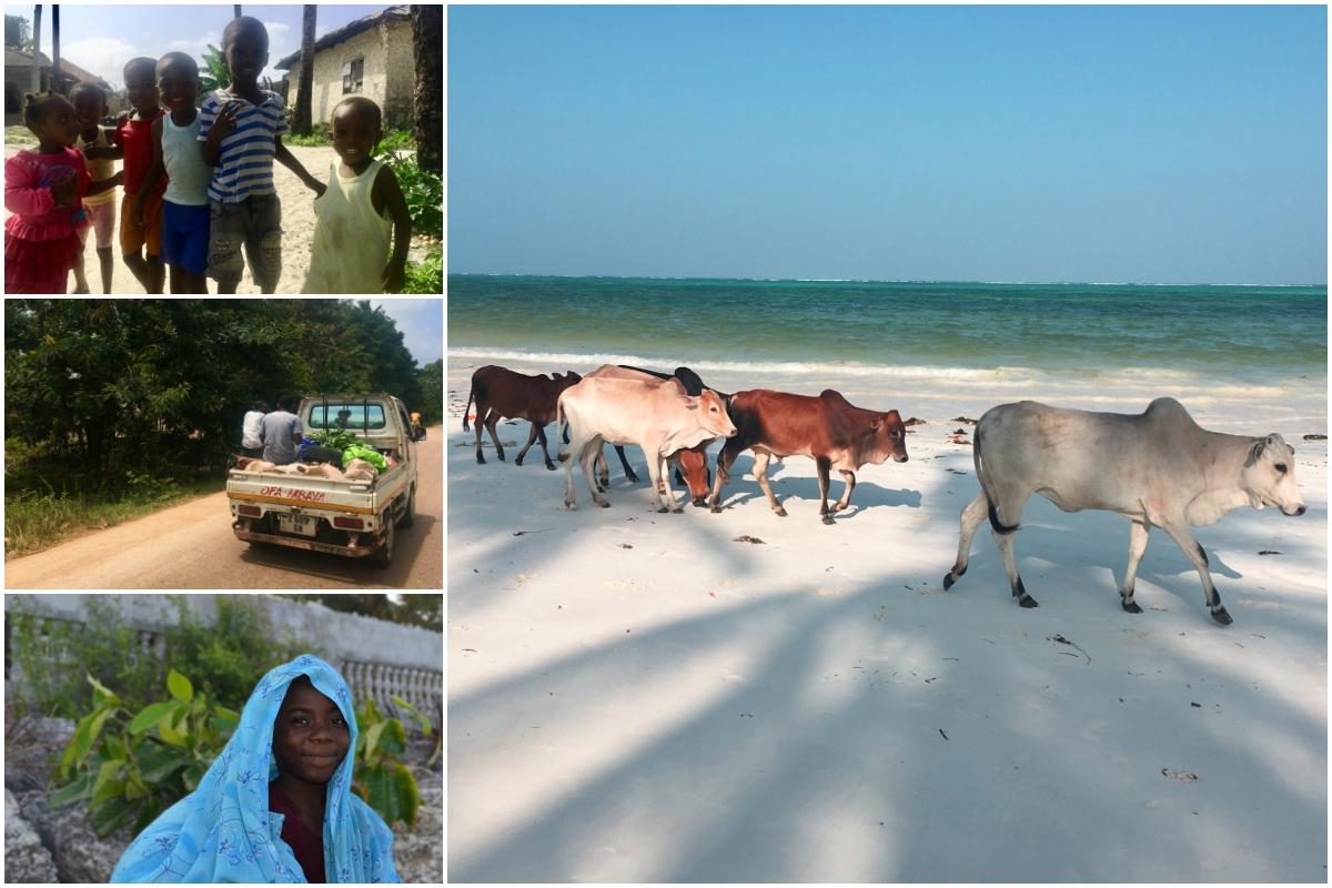 Obyvatelé Zanzibaru