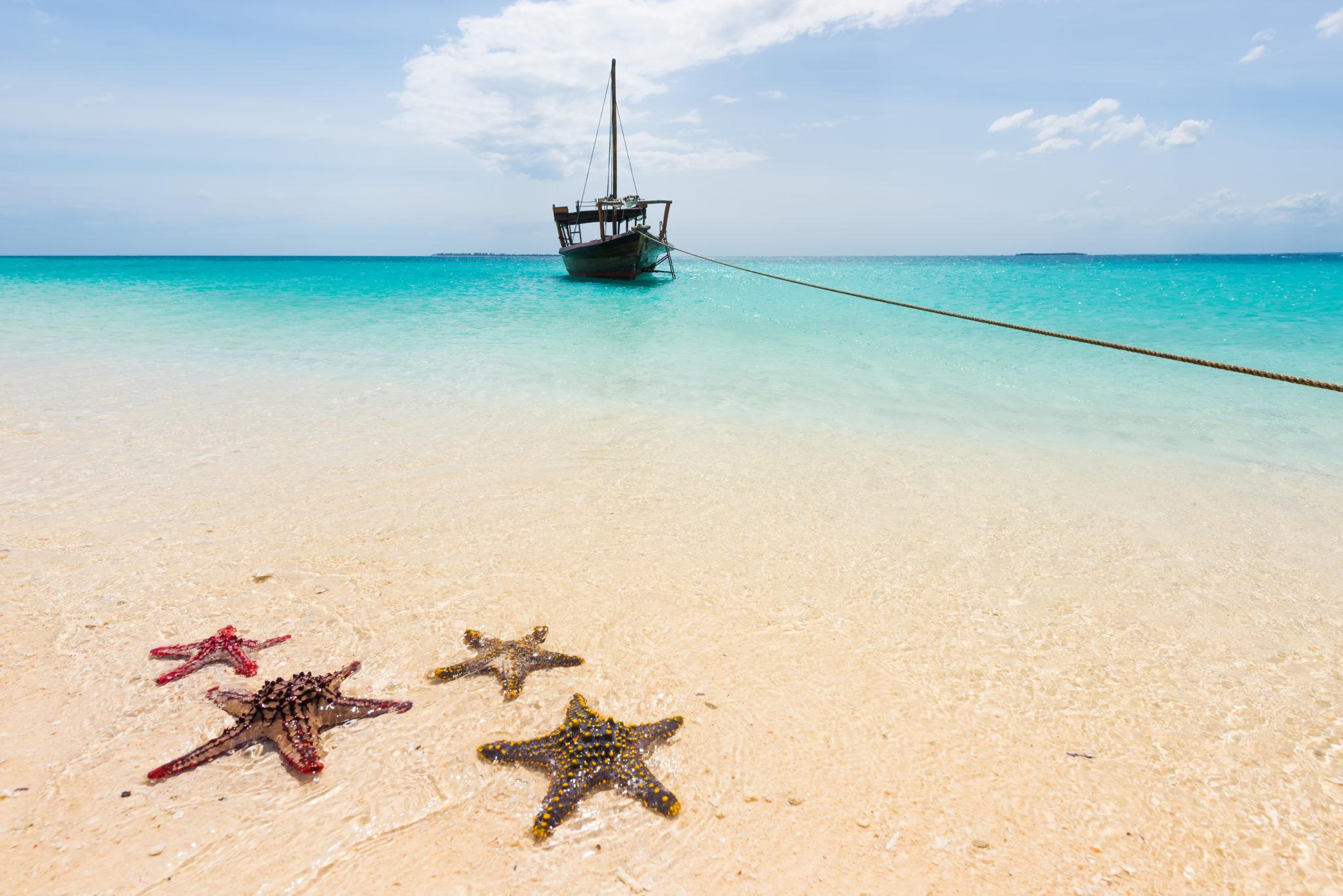 Odliv na Zanzibaru