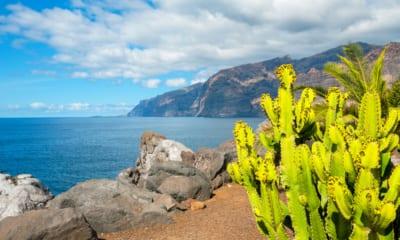Útesy na Tenerife na Kanárských ostrovech