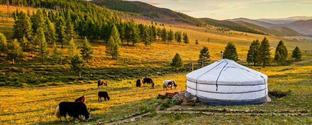 Mongolské pastrivny