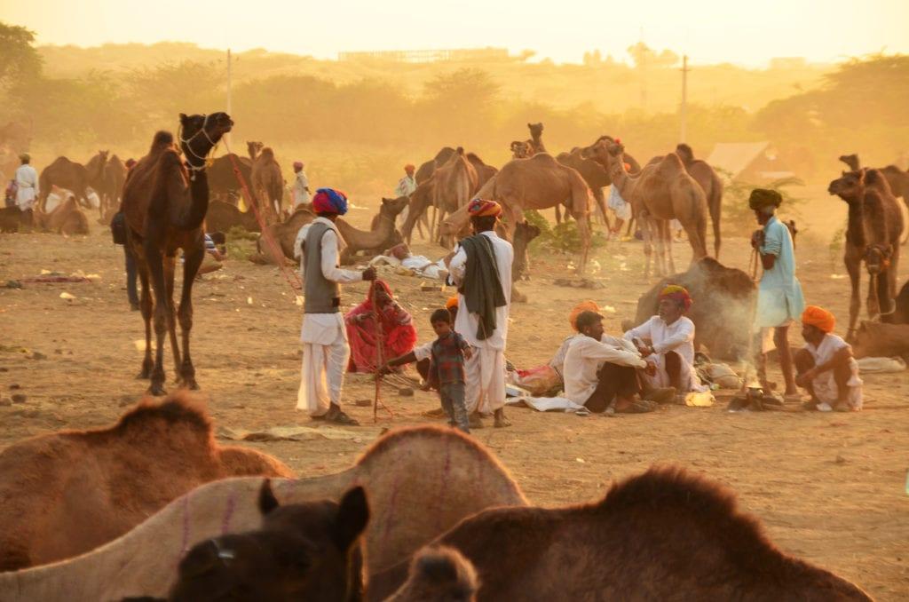 Velbloudí trh ve městě Pushkar