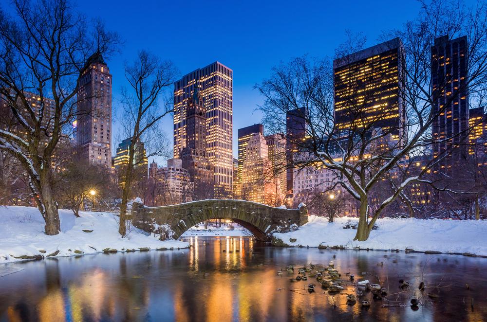 Zimní Central Park