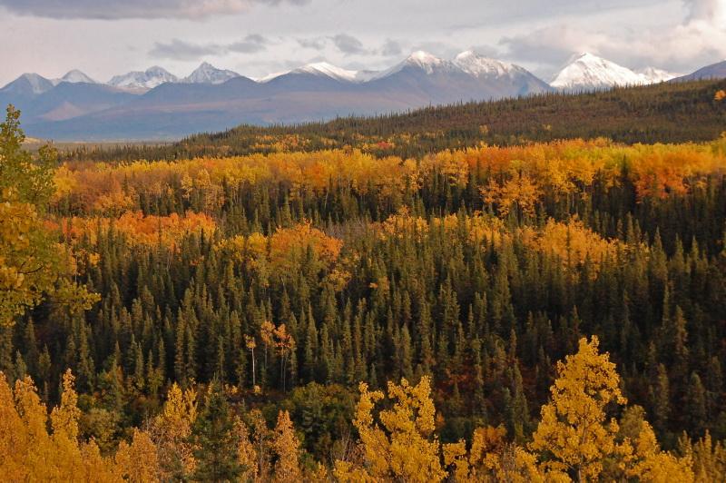 Podzimní barvy na Aljašce