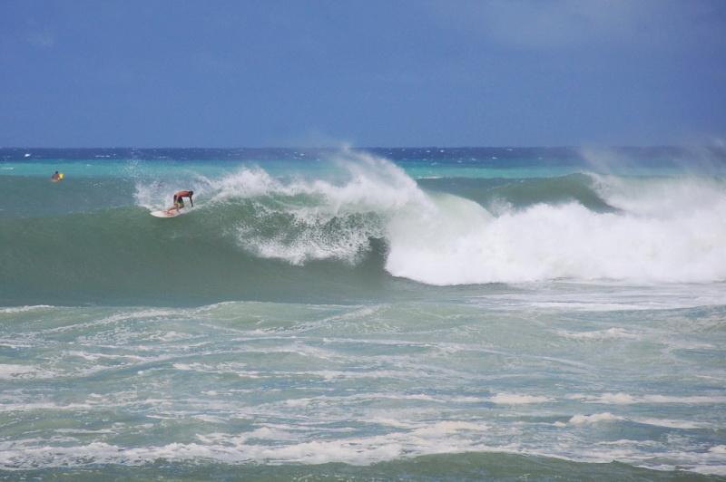 Profesionální surfaři v akci na severu Oahu