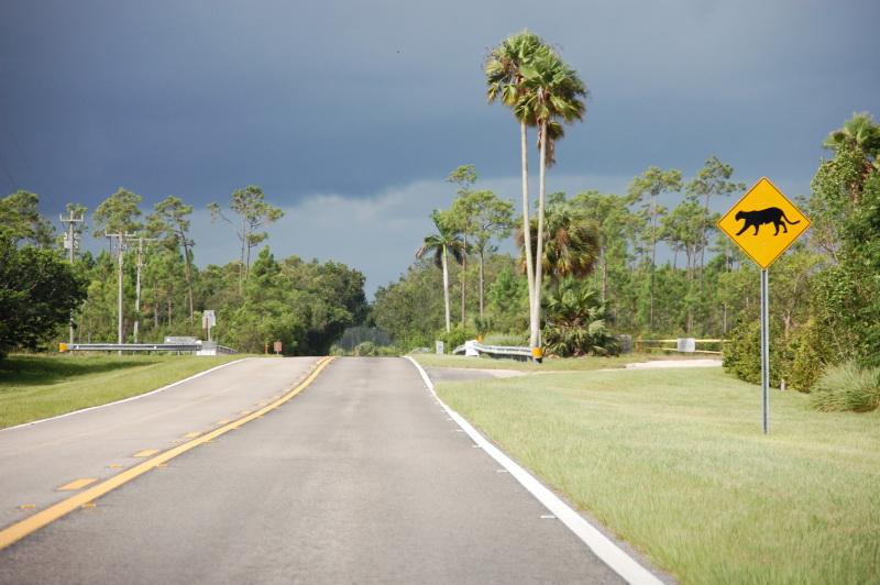 Vítej na Floridě!