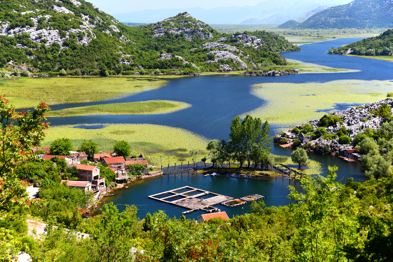 Albánie a krásné jezero Skadar