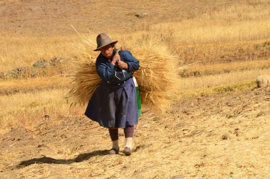 Jižní Amerika: Na vesnicích je situace velmi klidná