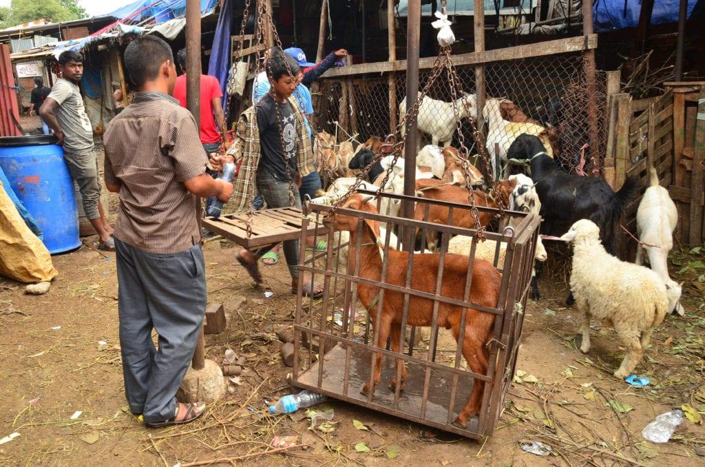 Káthmándú je taková velká vesnice