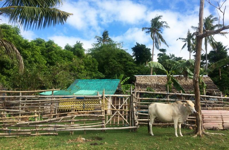 Vypravili jsme se za filipínskými šamany do středu ostrova Siquijor, Filipíny