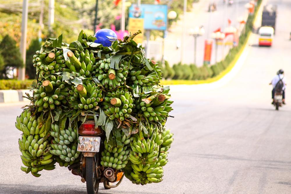 Vietnamci převezou na motorkách všechno