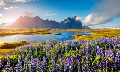Scenérie islandské krajiny