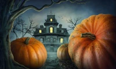 Halloween, jak to všechno začalo