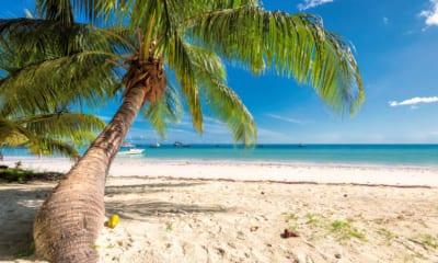 Pláž na Jamajce v Karibiku