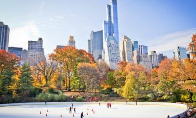 New York v zimě, Central park