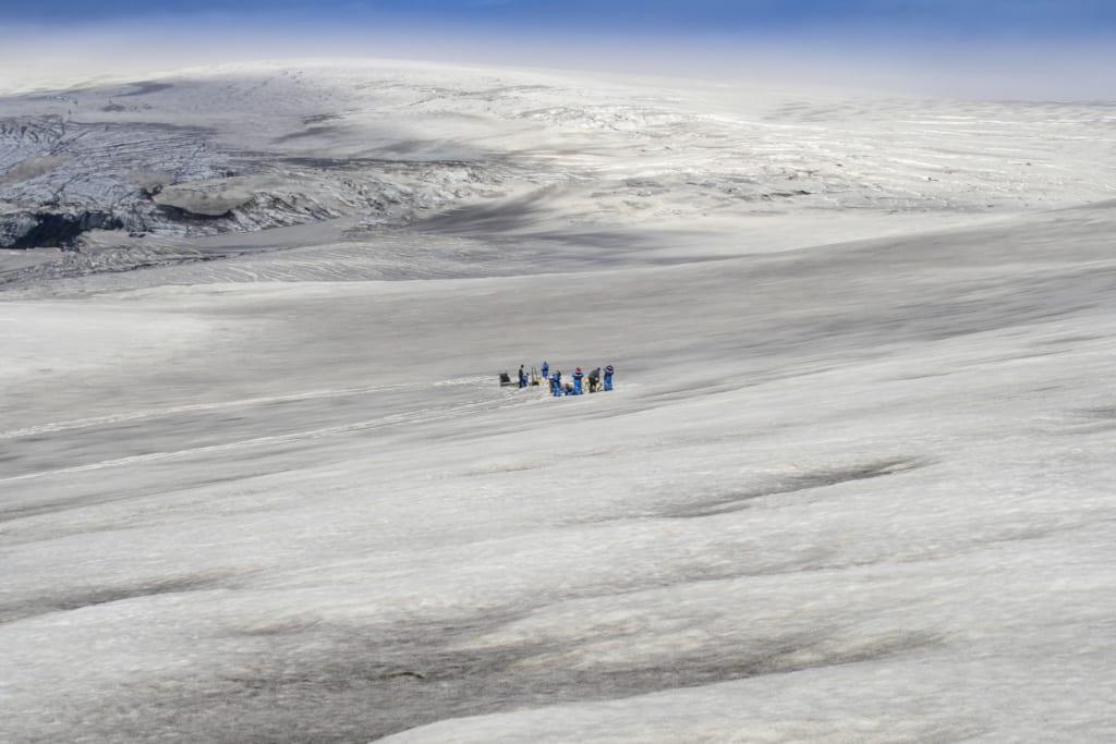 Psí spřežení na Islandu