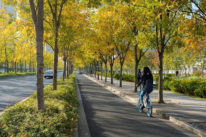 Runway park, ekologie, Šanghaj