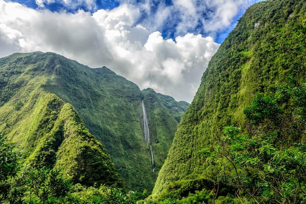 Ostrov Reunion, exotika