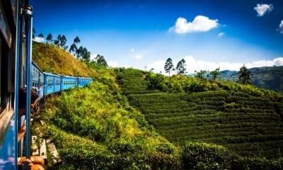 Cestování na Srí Lanku