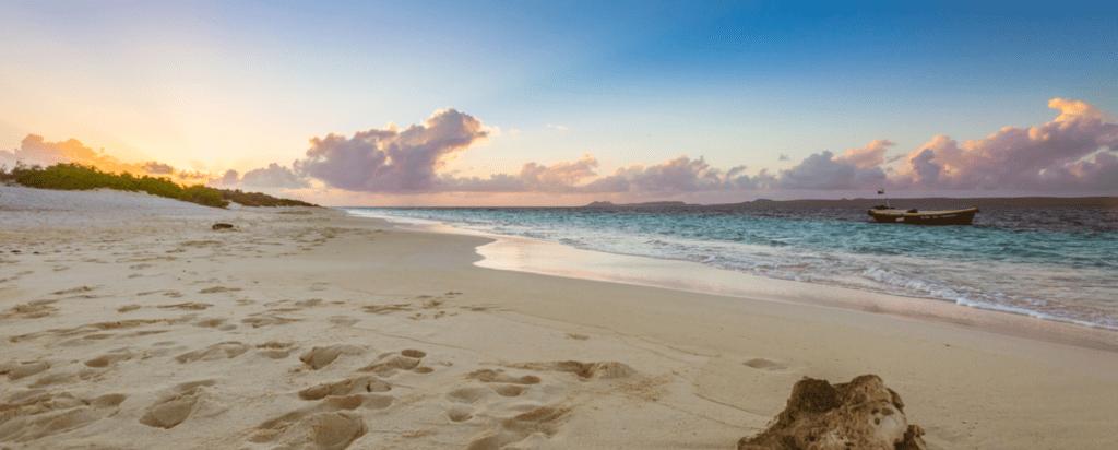 Kam bezpečně cestovat za koronaviru, otevřené země, Bonaire