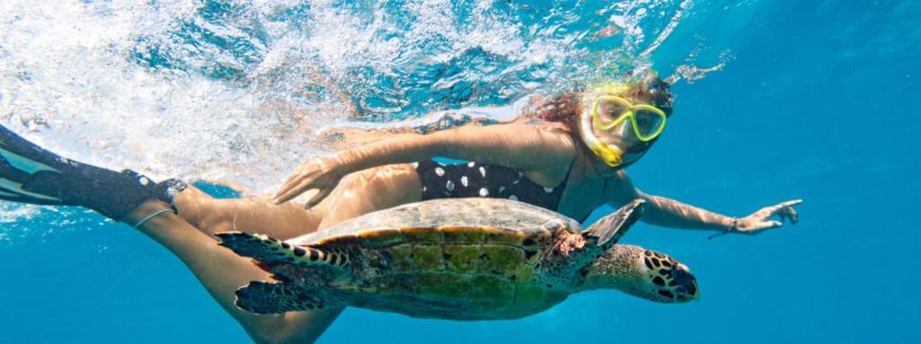 Potápění na Seychelách