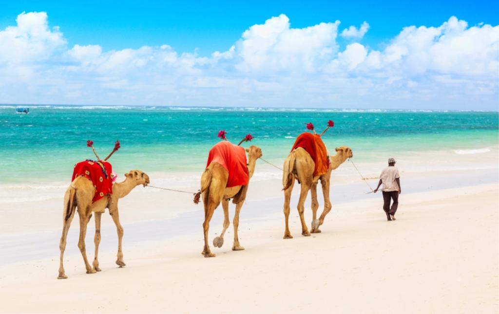 Mombasa, pláže, Keňa