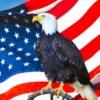 USA cestování
