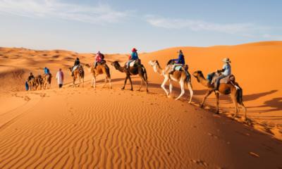 Maroko poušť